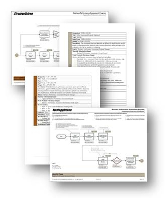 Sevian Business Programs - Process Flowchart and Activity Basis