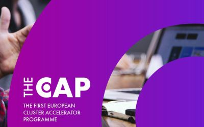 Clusters of Change – Europe's First Cluster Accelerator Program – An Interview with Bianca Dragomir