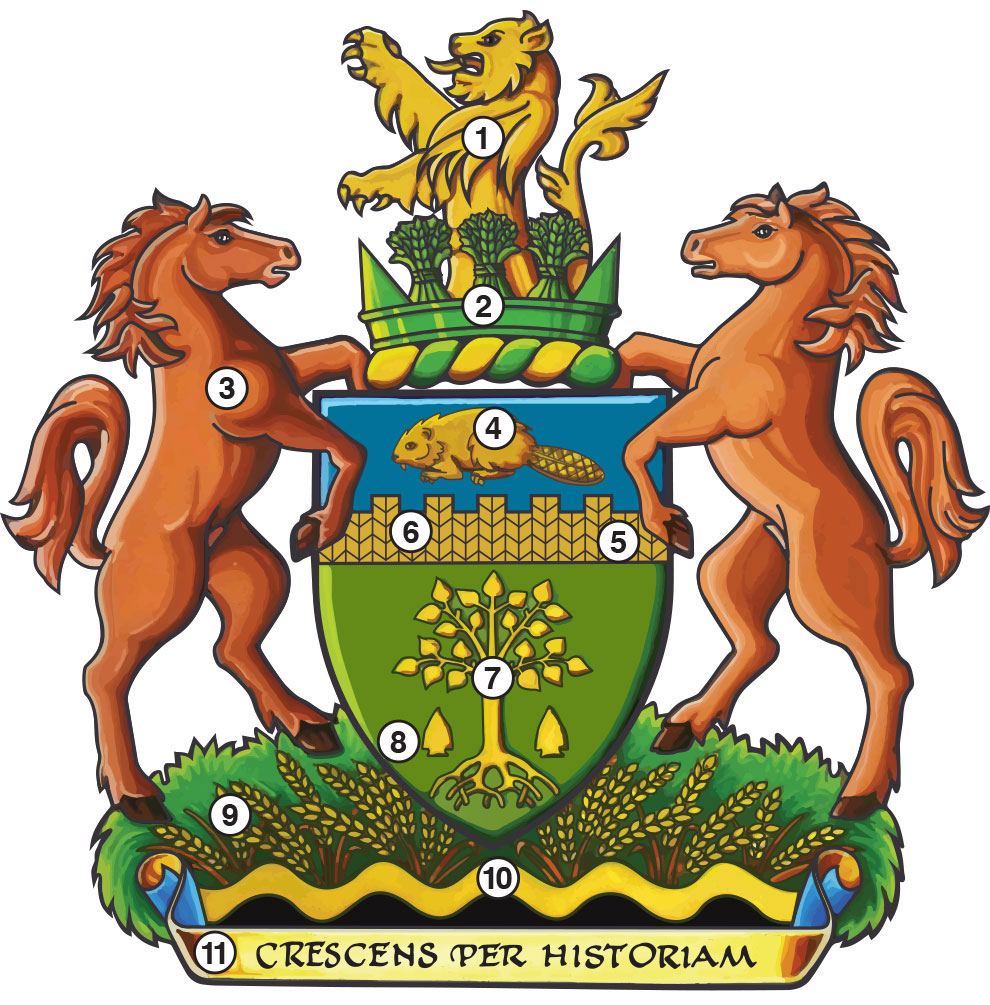 Image result for coat of arms