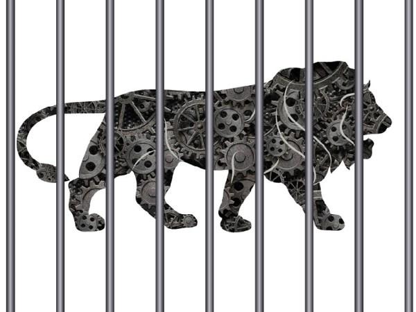 Art: Shruti Pushkarna