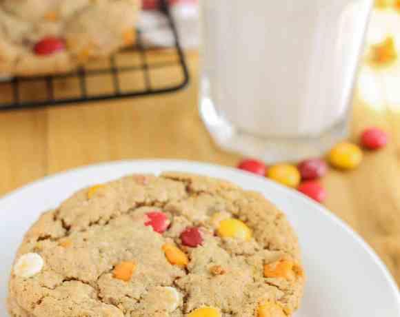 Autumn Monster Cookies