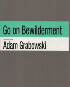 Bewilderment book cover by Adam Grabowski
