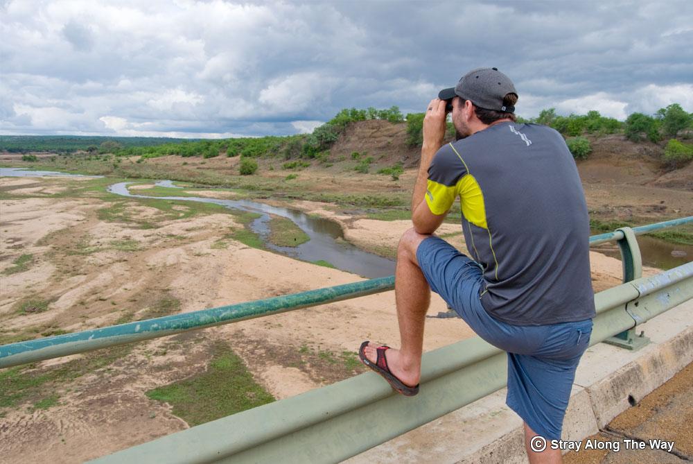 Bevan looking over the Letaba River