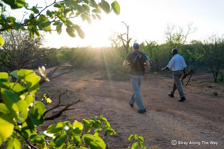 Bevan on walking safari in the Kruger National Parl