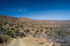 Mountain Zebra National Park Landscape
