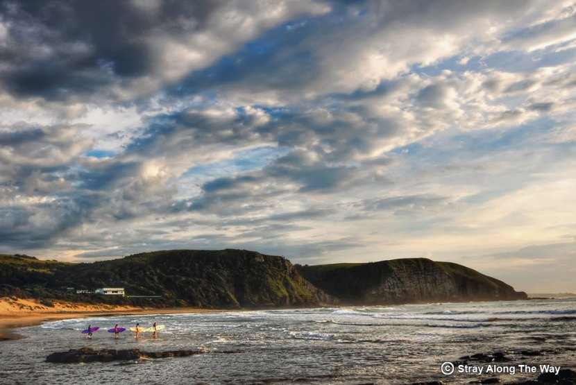 wild coast surfers