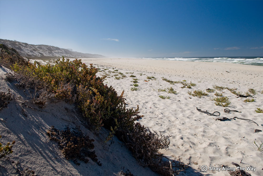 Vast stretches of emptiness in Yzerfontein