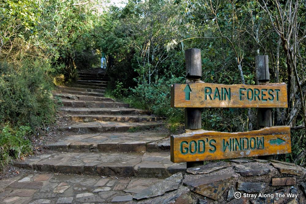 God's window walking trail stairway