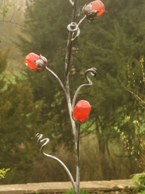 chelsea rose 4
