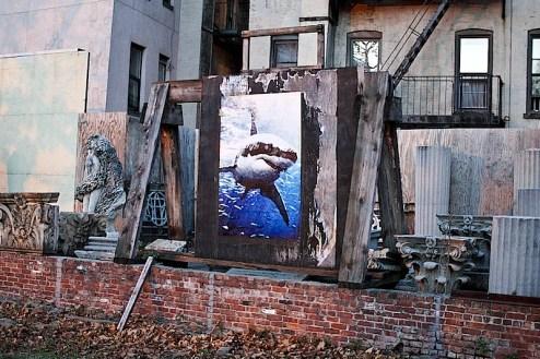 land_shark_street_art.jpg