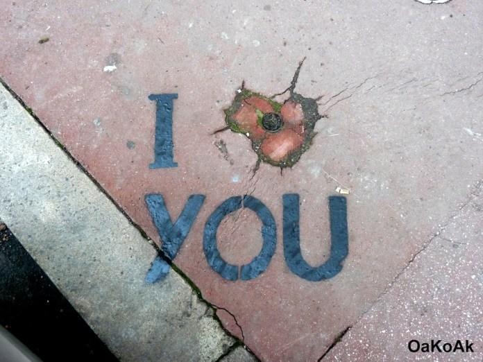 I love you – By Oakoak
