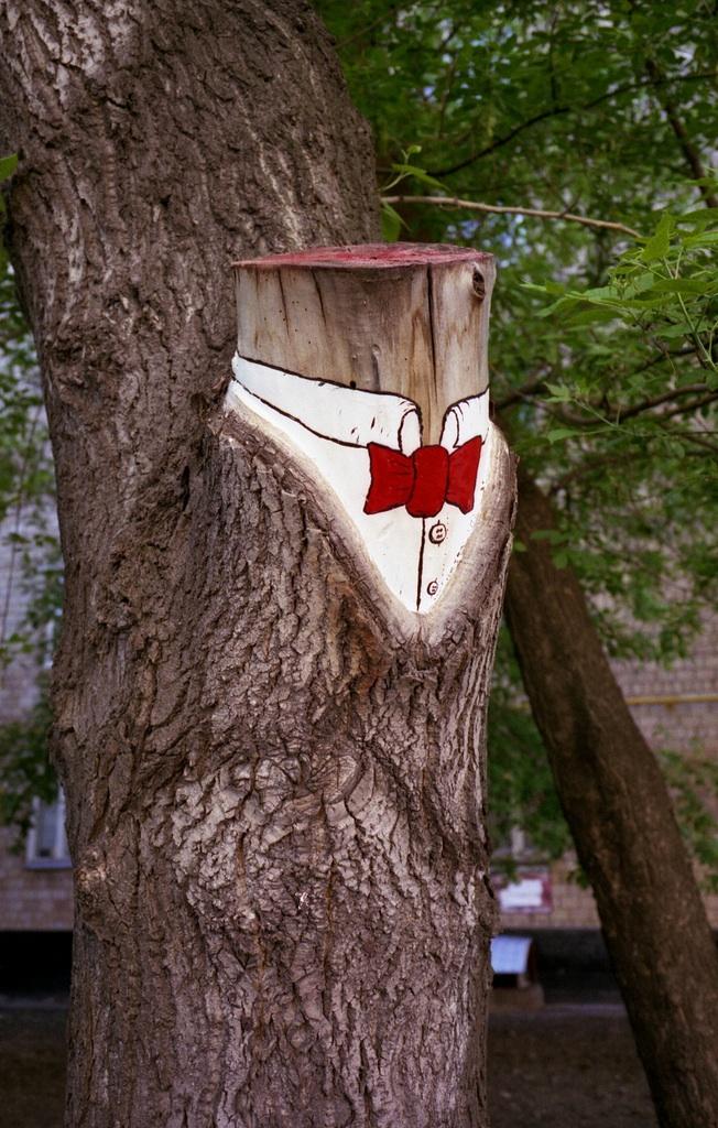 Street Art by 0331C 4