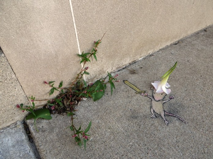 By David Zinn in Michigan, USA 890986
