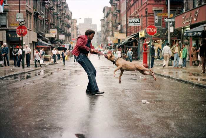 Man And Dog 1980