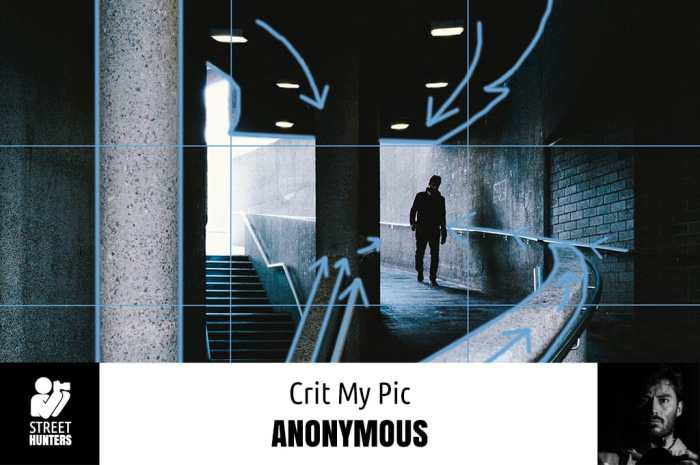 Anonymous Crit My Pic