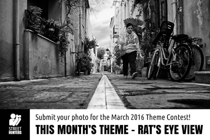 March 2016 Theme Contest - Rat's eye view