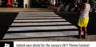 Monthly Theme Contest - Zebra crossings
