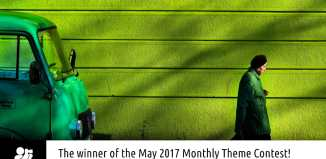 """Winner May 2017 """"The Colour Green"""" by Zlatko Vickovic"""