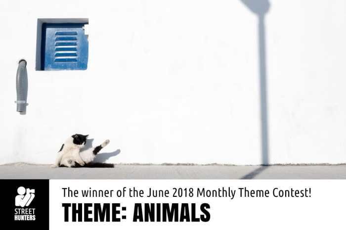 Achim Katzberg - Winner of the June 2018 contest