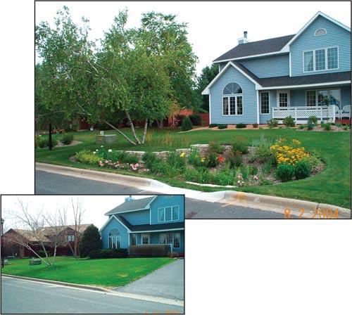 The resilient landscape sustainability concepts for Home rain garden design