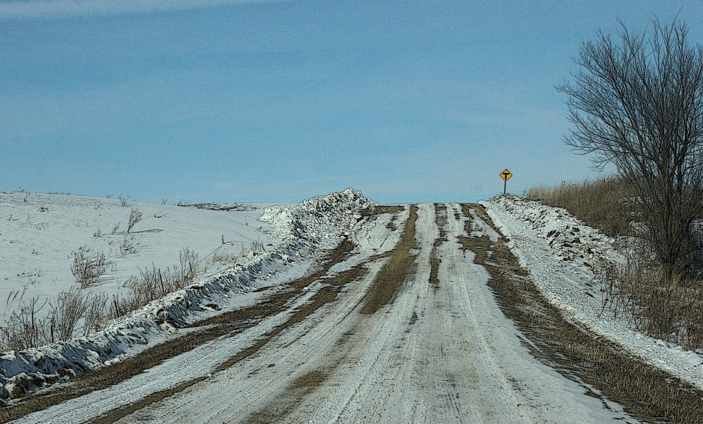 A drive along country gravel roads always uplifts me, no matter the season.