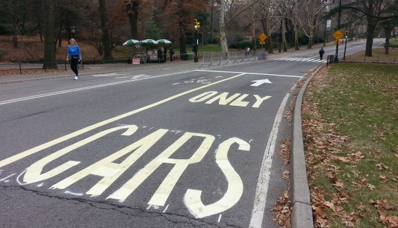 In case it wasn't clear enough who belongs in Central Park. Photo: Stephen Miller