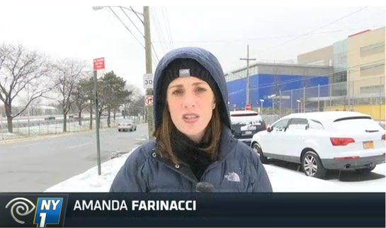 "Amanda Farinacci witnessed a ""notorious"" speed camera lighting up outside a Staten Island elementary school, but saw no speeding drivers. Image: NY1"