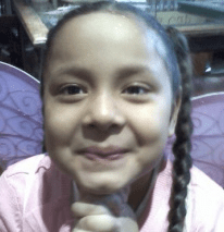 Responding to complaints from motorists, Bronx CB 8 postponed a decision on a play street application from the school where Rylee Ramos was killed by a curb-jumping driver.