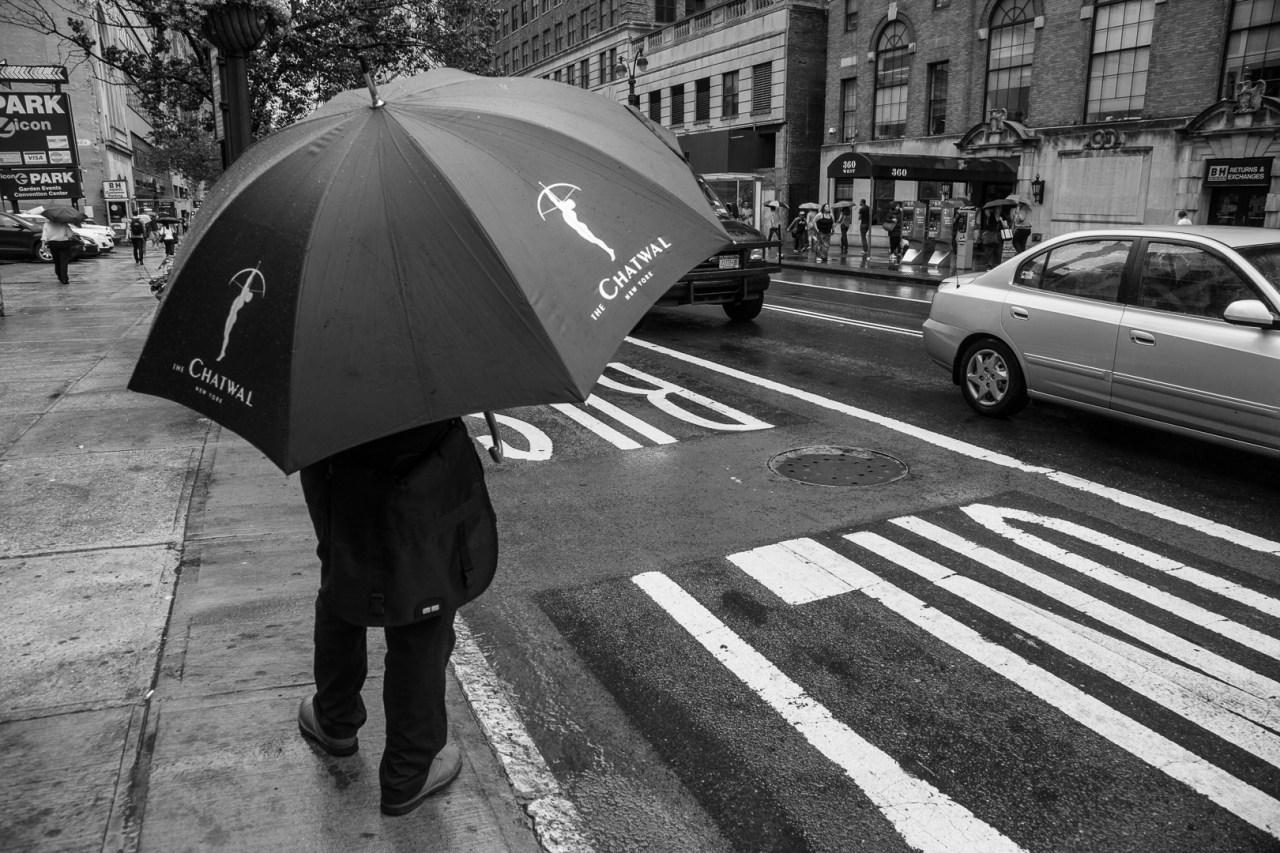 Alt Text - Umbrella