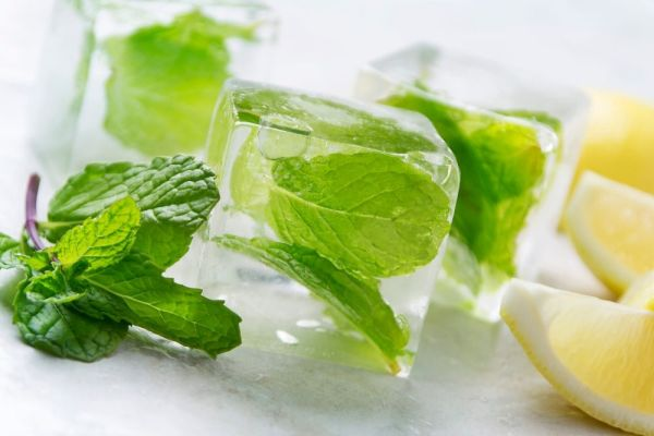 How to Store Fresh Mint - Mint Ice Cubes