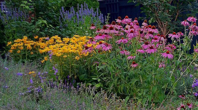 City Receives $18,000 Grant to Build Pollinator-friendly Gardens