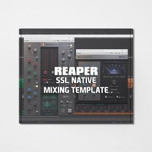 Reaper Mixing Template