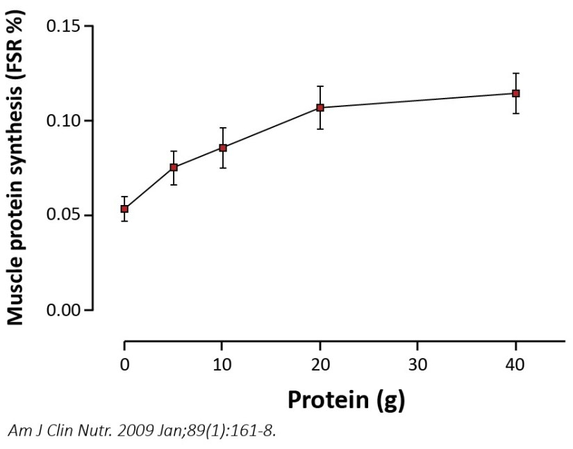 20 g protein per meal