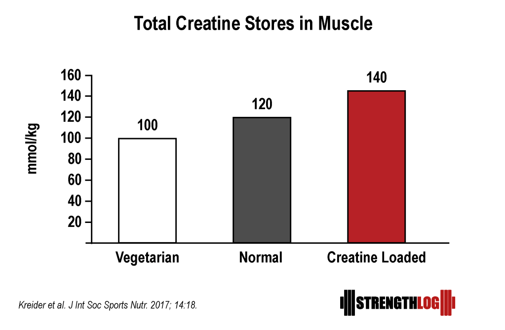 Total creatine stores in muscles