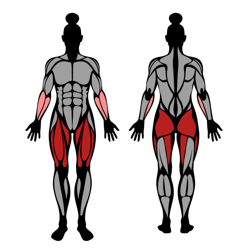 Muscles worked by dumbbell lunge