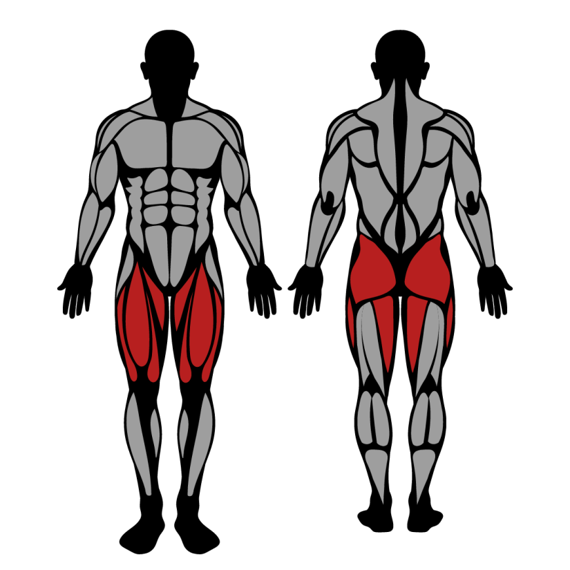 Muscles worked by hack squat machine
