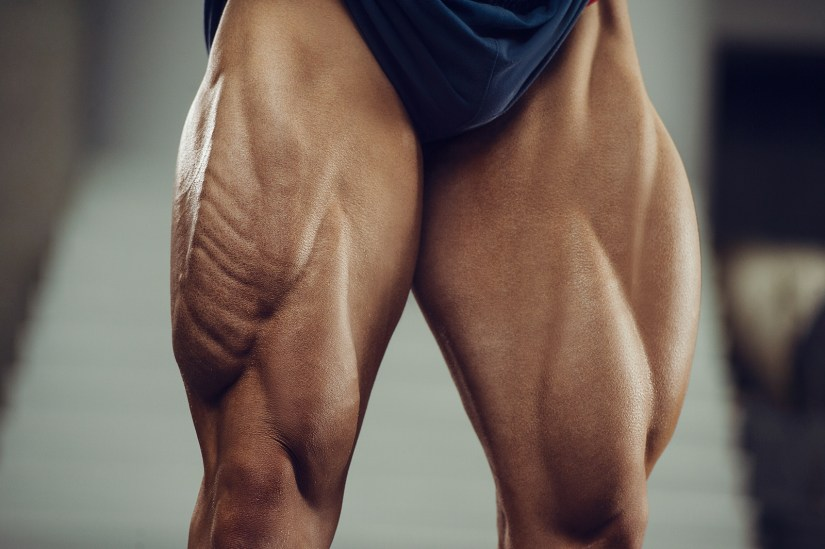 Quadriceps muscle imbalances