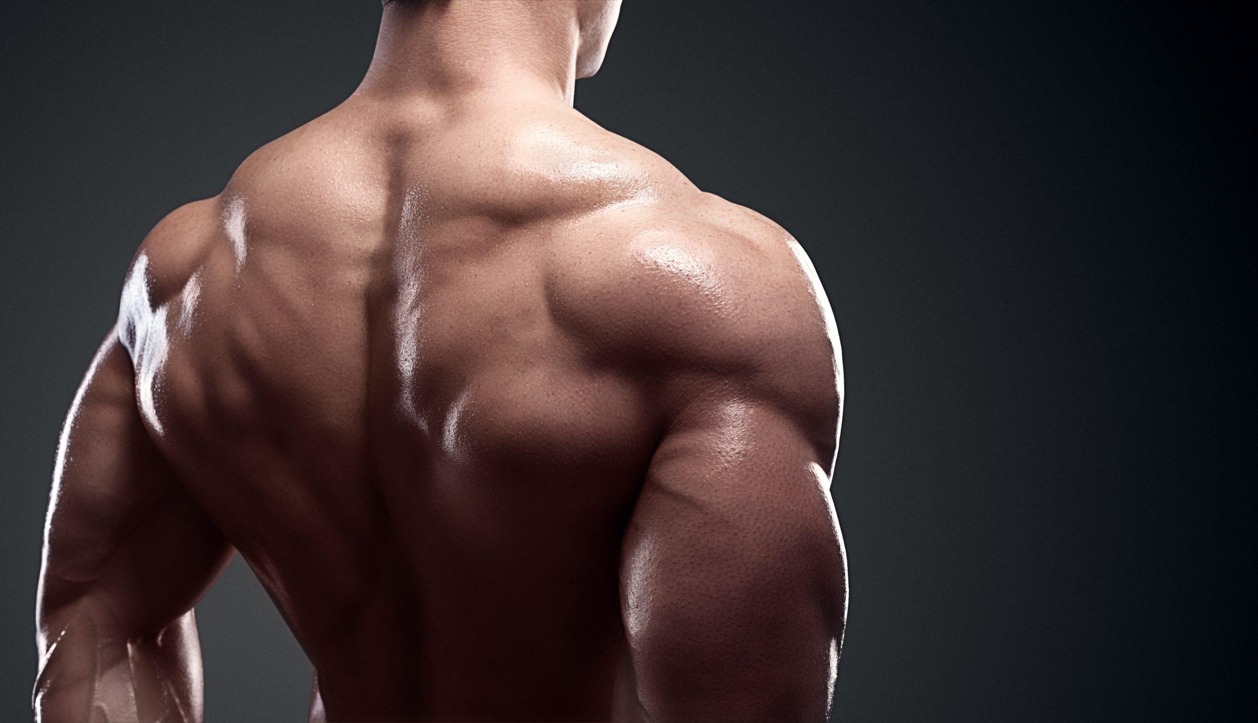 Rear delt muscle training