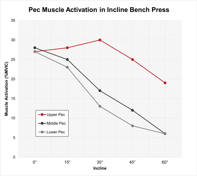 Pec muscle activation in incline bench