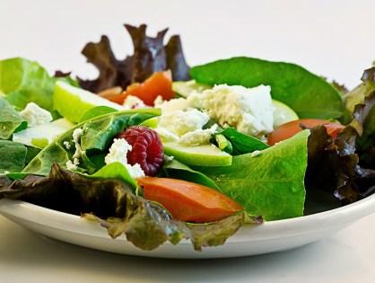 Stop madstress - sund kost som det faste holdepunkt