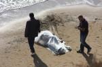 Calabria, cadavere ritrovato sulla spiaggia del Cafarone a Marinella: si indaga sulle cause della morte