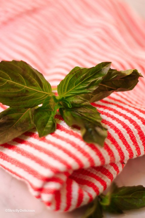 How to Become a Better Cook: A guide to Fresh Herbs   Basil