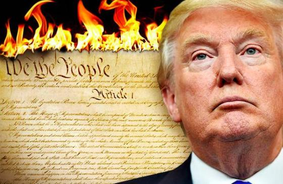Donald Trum - Burn the Constitution