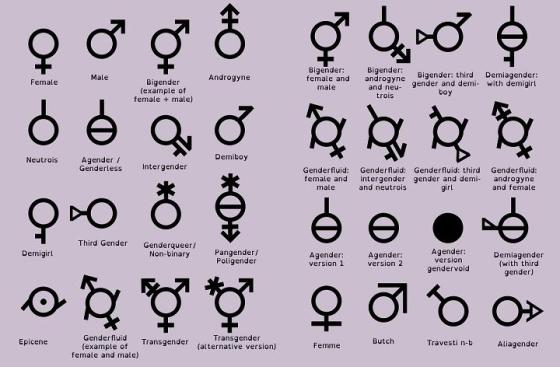 Gender And Sex Defining Our Terms The Strident Conservative