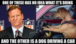 Image result for nfl losing viewers