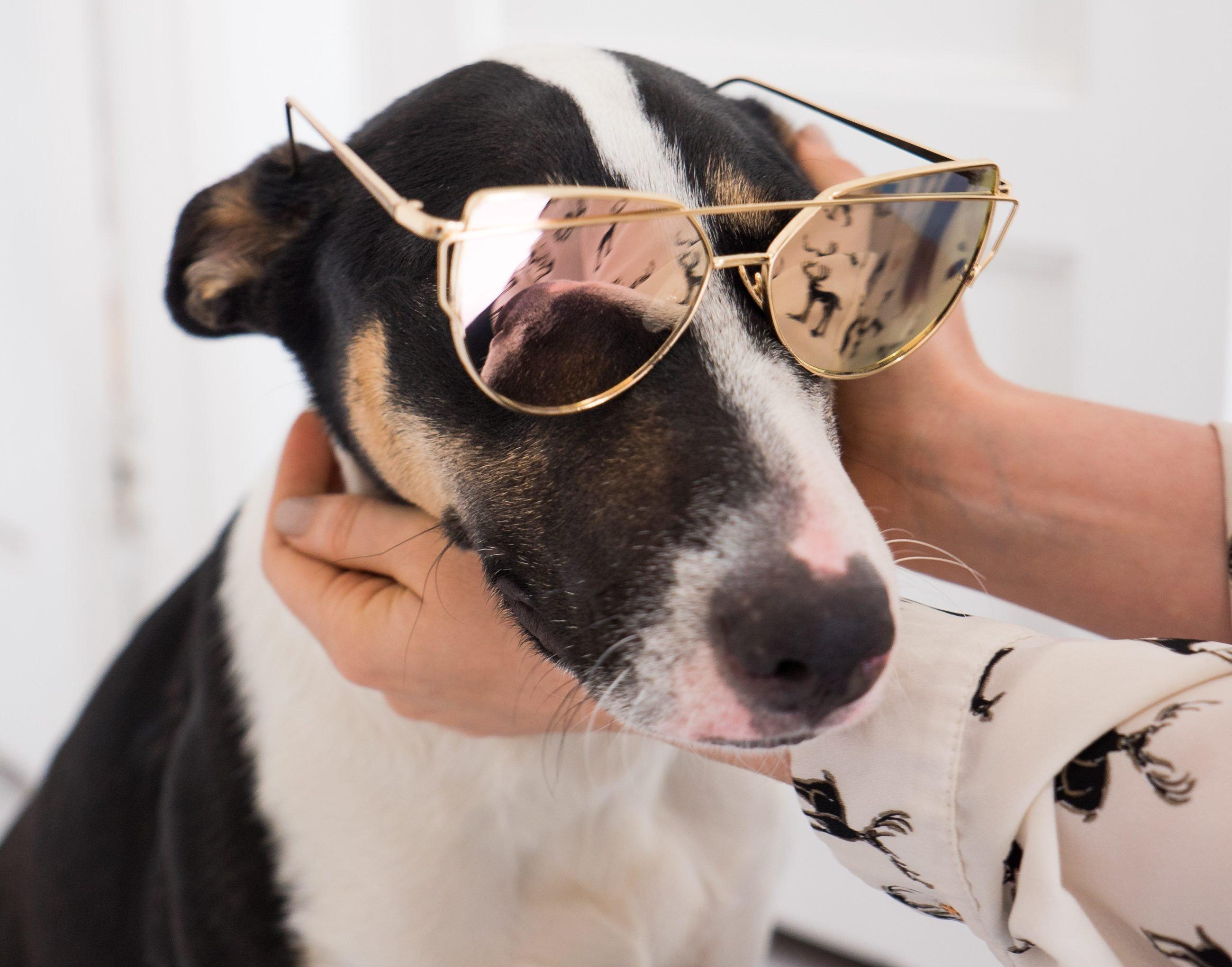 Rose Gold Mirrored Sunglasses