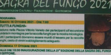 Una gita a…. Giffone / San Giorgio Morgeto LE FOTO DI SAGRA E FESTA