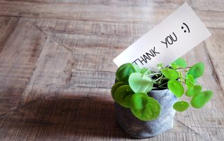 Thank You Note in Plant
