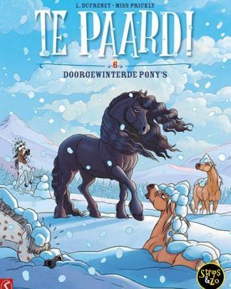 Te Paard 6 Doorgewinterde Ponys