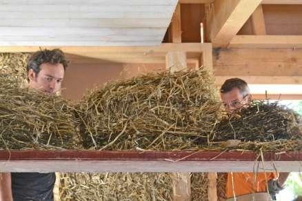 big-strawbale-workshop-ernstbrunn-02-16